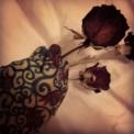 Hand Rose Part 1